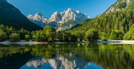 Решили открыть бизнес в Словении