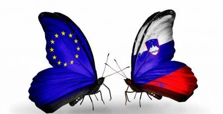 Голубая (синяя) карта ЕС в Словении