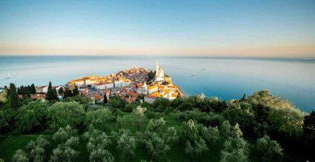 Первичная документация для регистрации компании в Словении