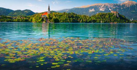 Популярное место для бизнеса и туризма - Еще один замечательный отзыв о Словении!